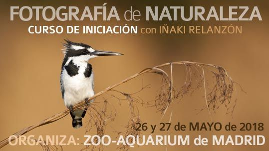 201805-Curso-introduccion-zoo-aquarium-madrid-relanzon-destacada